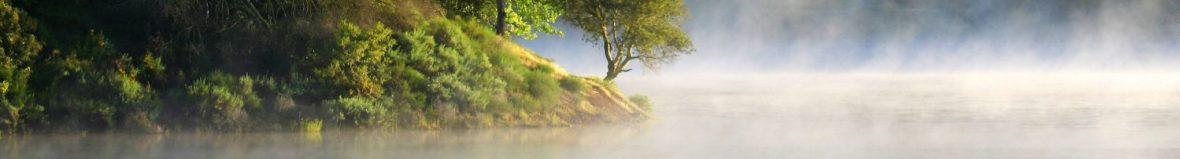 cropped-uvas-morning-mist_b_img_2217.jpg